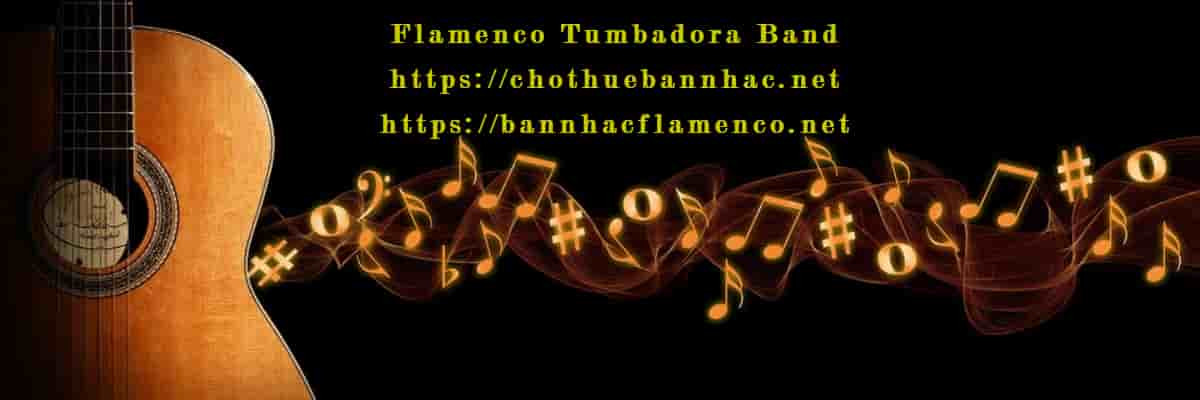 Flamenco Tumbadora Band Banner (2)